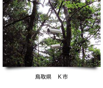 鳥取県 K市